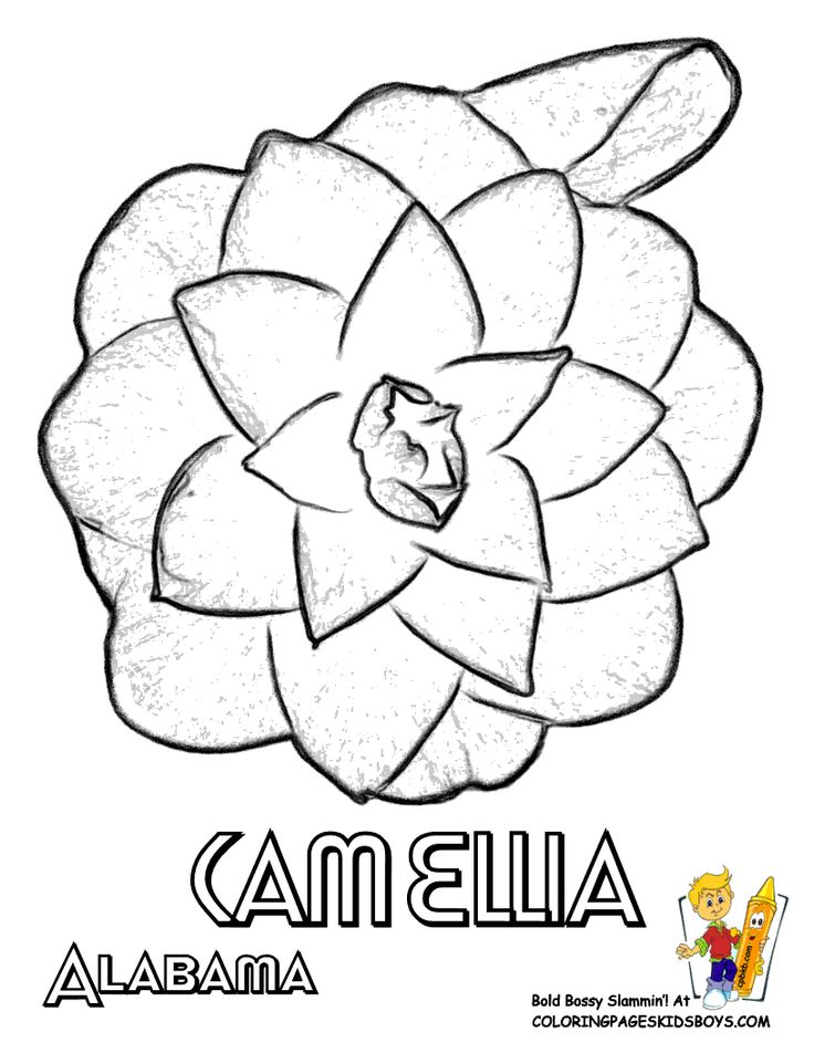 Free Flower Coloring Sheets Of US States Alabama