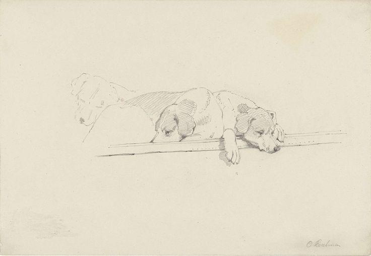 Schets van drie slapende honden, Otto Eerelman, 1849 - 1926