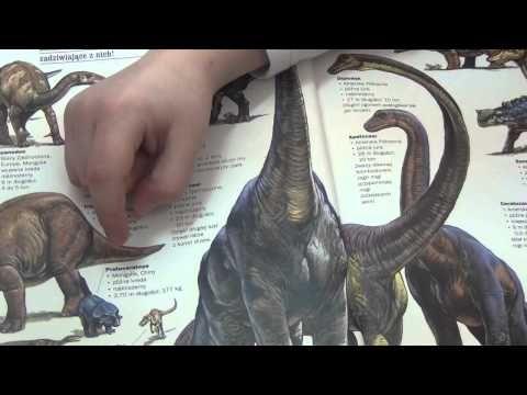 W naszej klasie – klasie pani Marty Kalisz każdy uczeń ma jakieś hobby. Dominik Tobolski interesuje się dinozaurami. Wie o nich prawie wszystko. Może o nich opowiadać całymi godzinami. Zbiera na ich temat artykuły, książki. Gromadzi kolekcję ich trójwymiarowych modeli. Pani Marta już dawno to zauważyła. Dzięki naszej wychowawczyni Dominik poprowadził fascynującą dla nas lekcję. Najpierw go słuchaliśmy, zadawalismy mu pytania, potem oglądaliśmy książki o dinozaurach, które przyniósł.