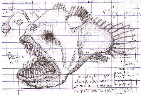 Angler Fish Grid by Always Sugar Coated, via Flickr
