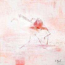"""""""Flamingo run"""""""