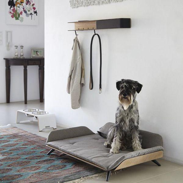 15 Creative Dog Bed Design Ideas