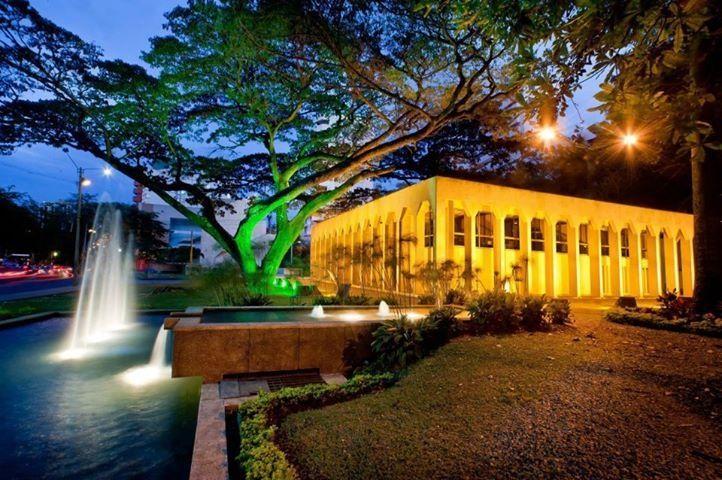 La Tertulia. Cali. Colombia. Visit www.parfumflowercompany.com for garden roses…