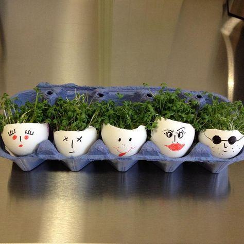 Eine schöne und frühlingshafte Idee auf Ostern sind Kresse-Eier!