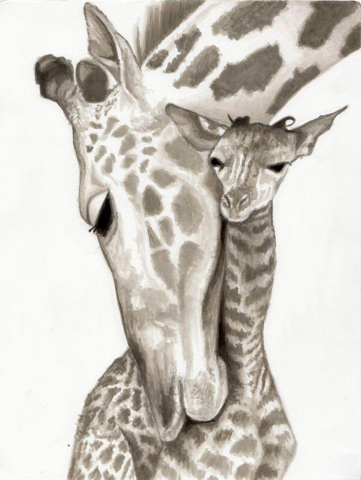 giraffe drawing pencil head drawings animal animals giraffes elephant tattoo draw babies tattoos zeichnen mama pen giraffen キリン ink zeichnungen