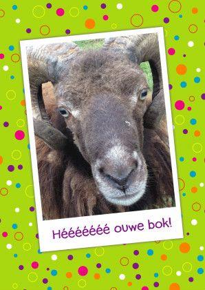 Grappige verjaardagskaart, direct online beatellen -Studiozet.nl