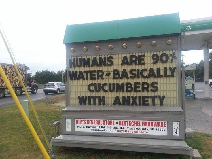 Anxious Cucumbers