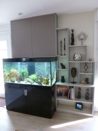 Fabrication et pose d'un placard qui cache le coffre électrique de l'aquarium et qui permet également d'entreposer les accessoires de nettoyage ou les produits alimentaires pour les poissons.