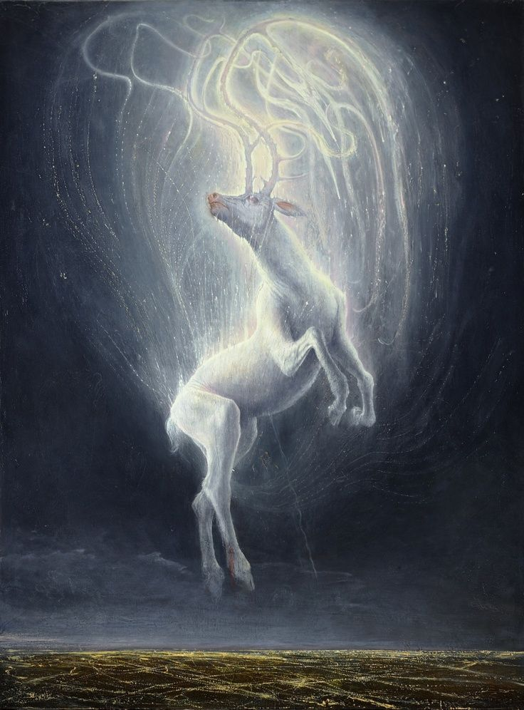 The Celtic people considered White Deer to be messengers from the otherworld. They believed that the white stag would appear when one was transgressing a taboo, such as when Pwyll tresspassed into Arawn's hunting grounds. Arthurian legend states that the creature has a perennial ability to evade capture; and that the pursuit of the animal represents mankind's spiritual quest. It also signalled that the time was nigh for the knights of the kingdom to pursue a quest.