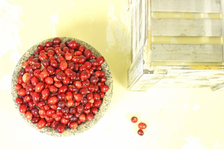 Fresh Cranberries, Recipes & A History Of Children's Labor Rights | Pinteresting Against Poverty