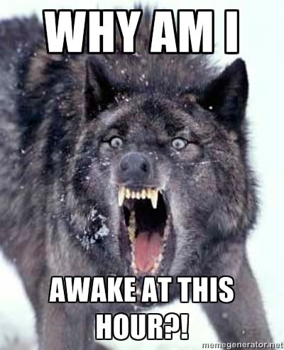How I look and feel when I awake up wayyyyy too early.
