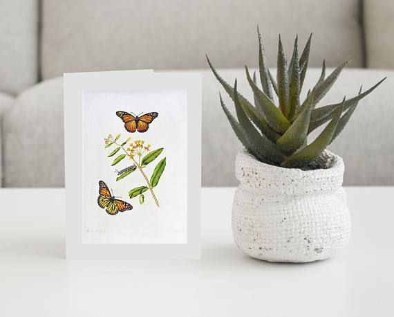 Vintage Flower and butterfly Cards-Pkg of 6 Cards With