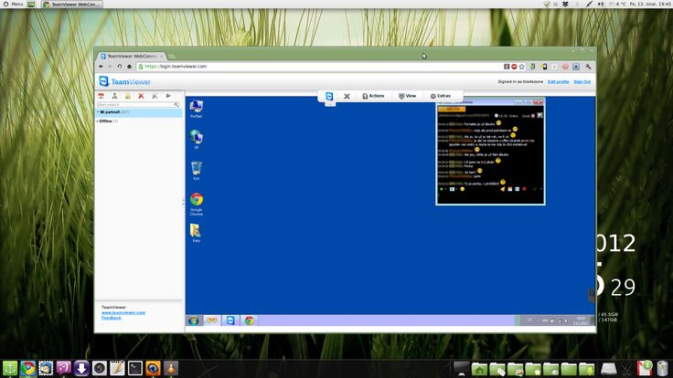 TeamViewer in Google Chrome on Linux Mint