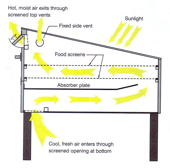 Food Diagram