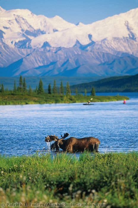 Ok I've been to Alaska already but I have to go back, I've never seen anything so beautiful!