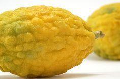 Cedro: tutte le proprietà benefiche per la salute e tre deliziose ricette per gustarlo in insalata