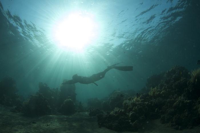 Freediving in Amed Bali.
