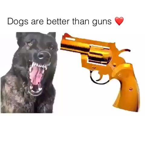 Das ist herzerwärmend ❤️   – Hunde