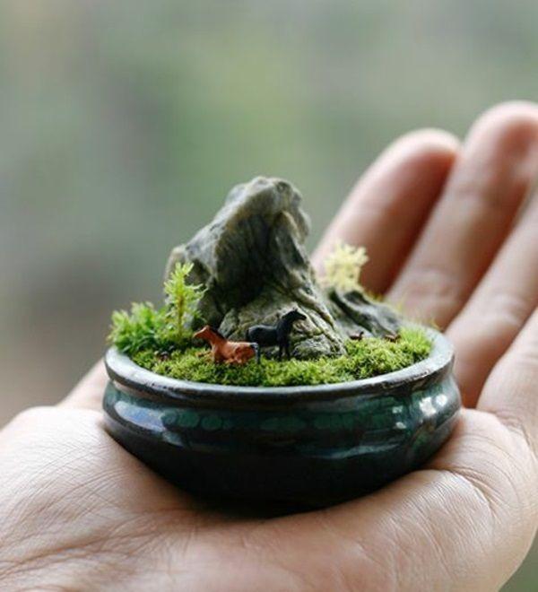 mini zen garten mini bonsai handvoll klein | terrarium | pinterest, Garten und bauen