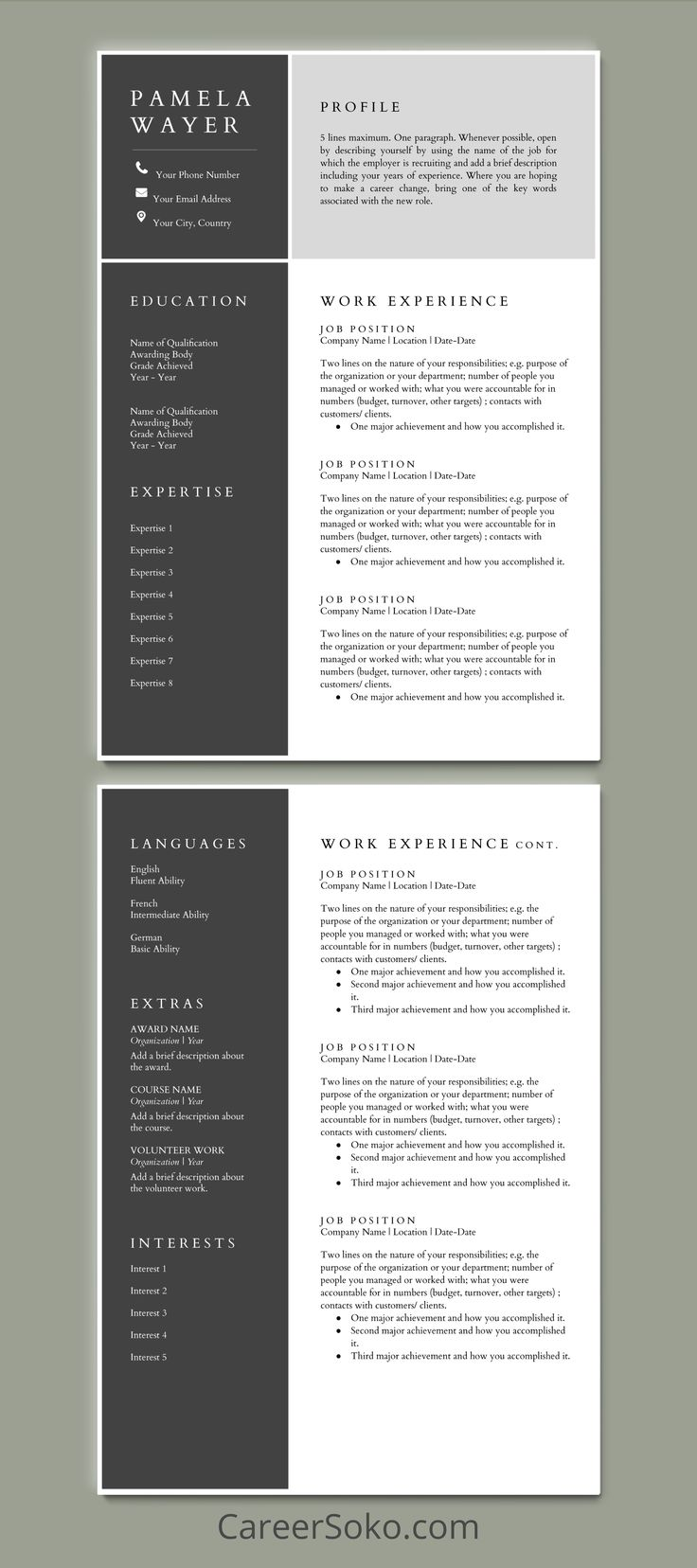 Resume Template Google Docs, Resume with Cover Letter
