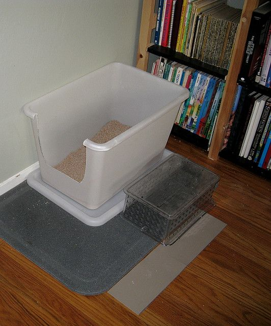 Learned About Litter Boxes. Through trial and error Iu0027ve learned the EXACT same things. Very clear post on the necessary space for our indoor cats. : litter box on carpet - Aboutintivar.Com