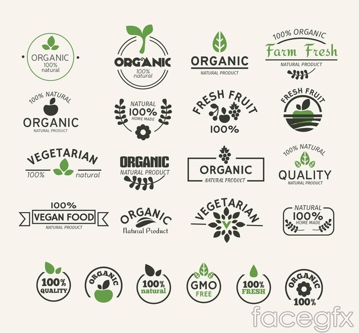 22 natural green food label vector