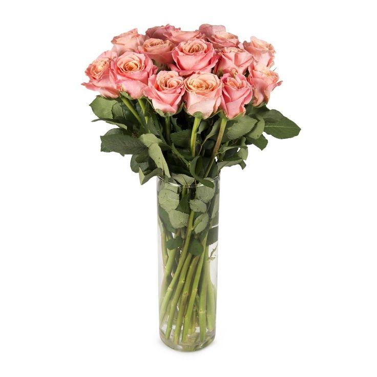 Miss P Roses 50cm