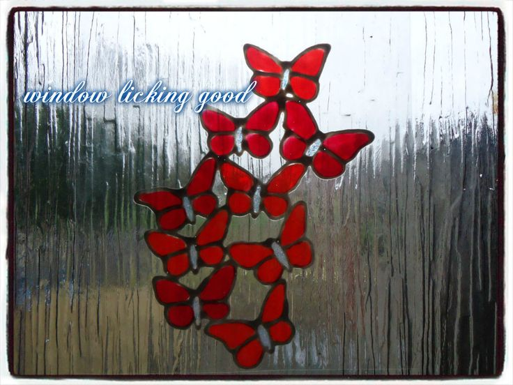 Butterfly window cling pack patio door sticker playroom conservatory butterfly window cling pack patio door sticker playroom conservatory art decal in wall decals stickers ebay window licking good window clings planetlyrics Image collections