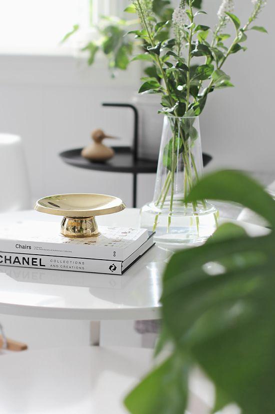 Green plants, monstera, living room, scandinavian