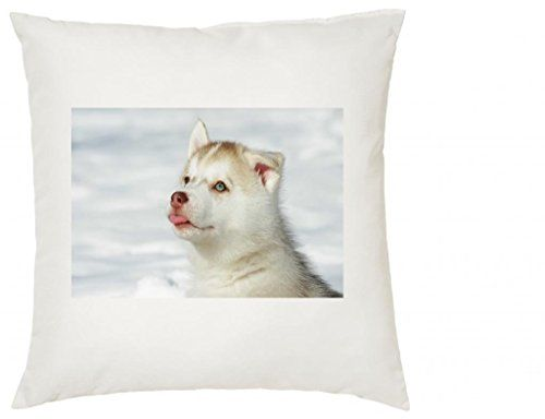 Husky Rouge Puppy) #SILKY Coussin (AC) ° 136 The Lazy Cow https://www.amazon.fr/dp/B00MRS7G4Q/ref=cm_sw_r_pi_dp_PC9zxb28X0280