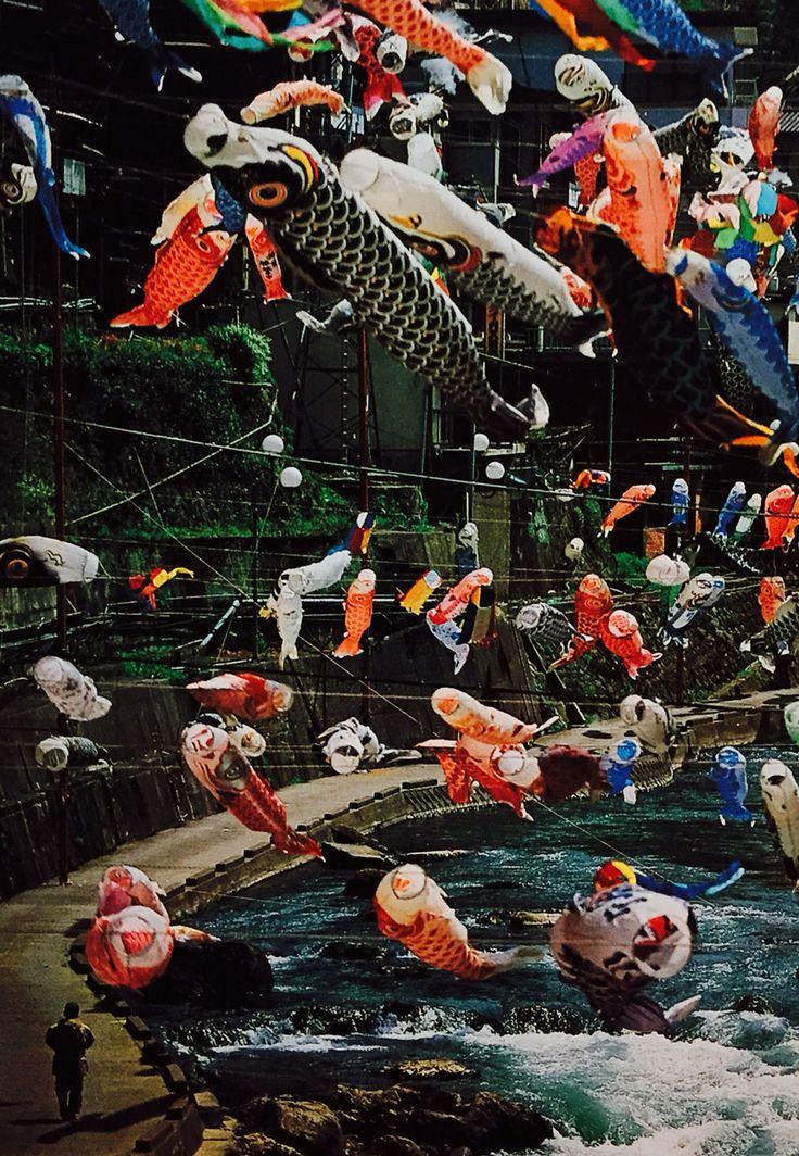 Golden Week- Japan, carp streamer for children's day