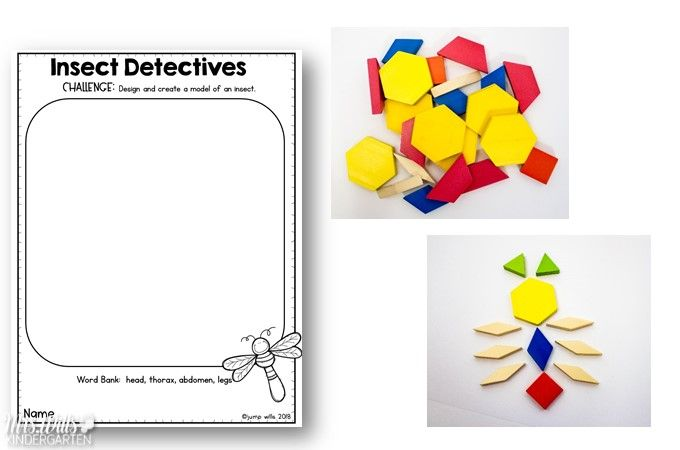 Insect Lesson Plans   Early math   Kindergarten math activities, Bug