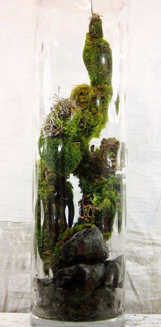 138 Best Moss Gardens Images On Pinterest Miniature