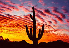 a. i miss these sunsets.  b. i miss az clouds.