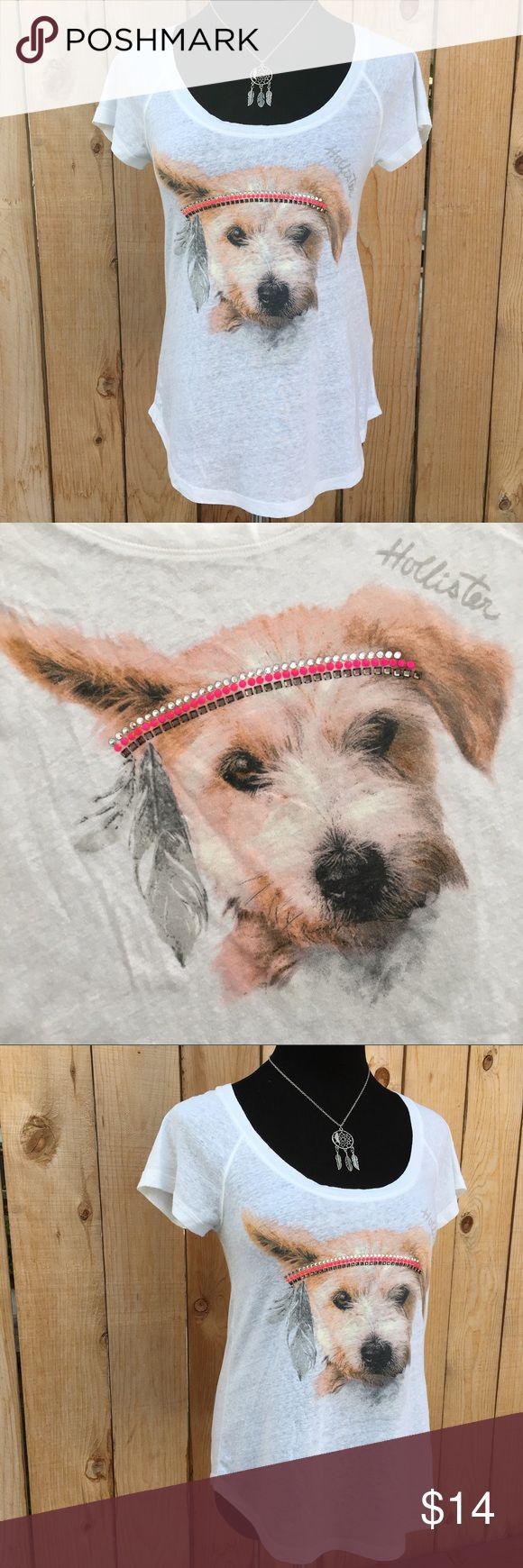 """🆕 Hollister 
