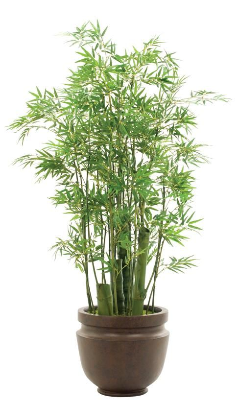 Natural Decorations Inc Bamboo Green Shown In