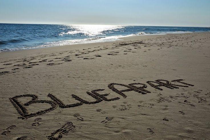 www.blueapart.pl #blueapart #servicedApartments #jastarnia #jurata #polishSea