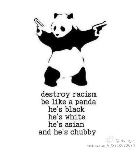 This picture was used for an anti-racism campaign. It illustrates how an animal that represent so many difference is still one of the most loved animals in the world. Pandas are animals known for their cuteness, rate of extinction and most importantly not having a predator i.e they move well with other animals. The phrase 'be like a panda' means there should be no discrimination between one another no matter how different we all are.