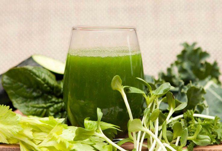 Una mañana energizante con verdes y vivos. ¡Salud!