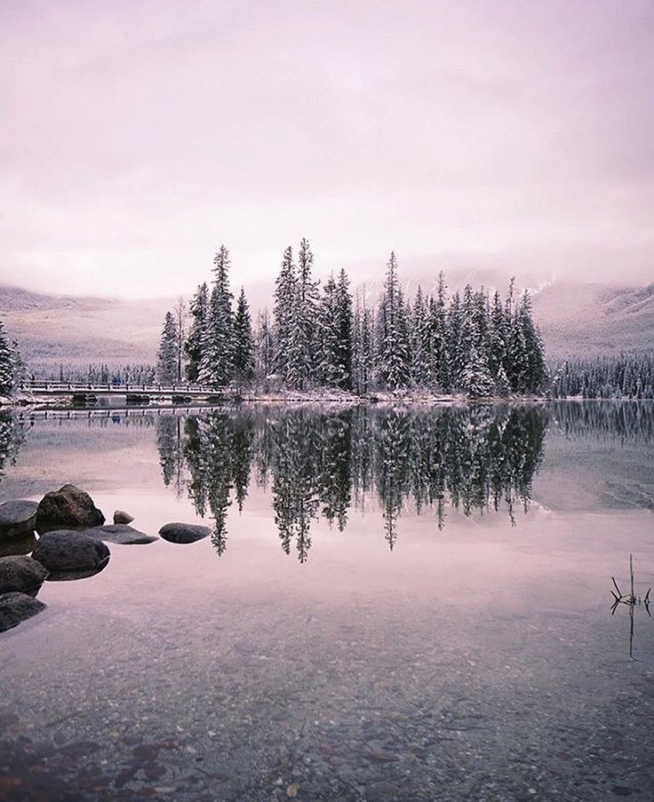 Hello winter  lovely seeing you here!  Photo by @awesomedon #MyJasper