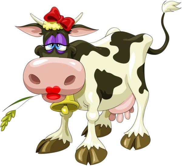 vache                                                       …