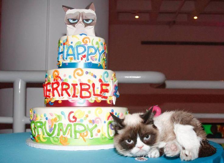 Grumpy Cat has huge birthday party (in New York), still looks grumpy April 30, 2014 #GrumpyCat #Tard #TardarSauce