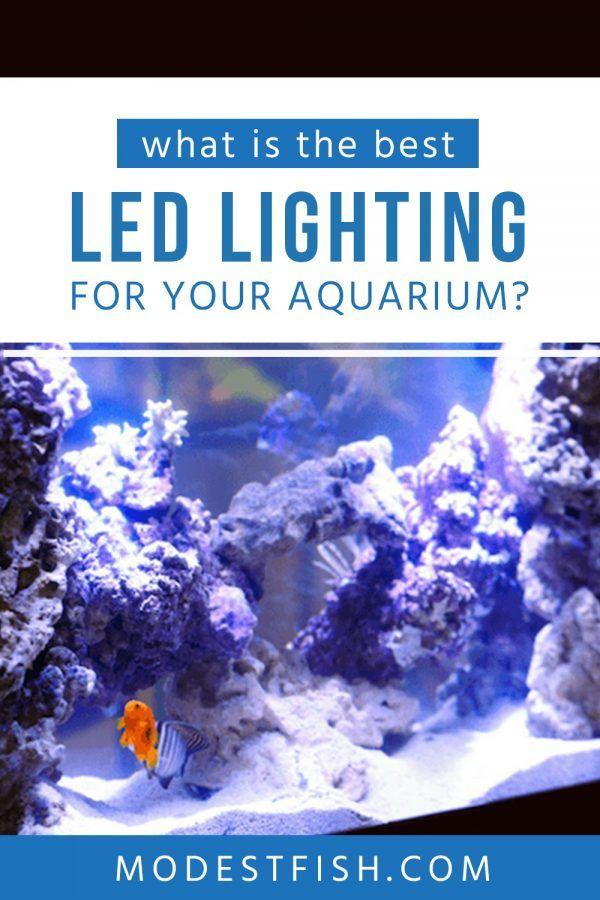 Best Aquarium Led Lighting For Reef Planted Tanks 2018 Reviews In 2020 Fish Tank Lights Led Aquarium Lighting Aquarium