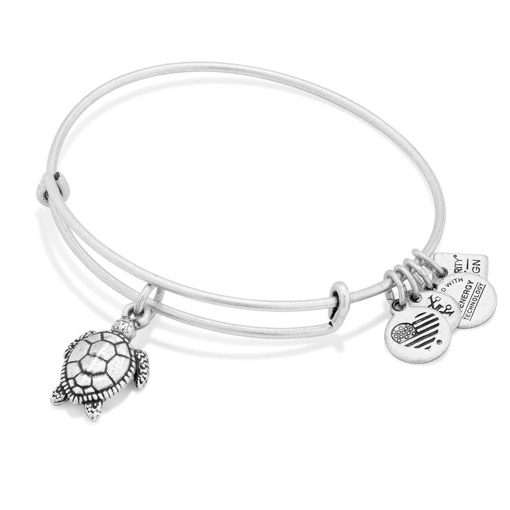 Personalized Photo Charms Compatible with Pandora Bracelets. Protection • Longevity • Persistence - IN SILVER!!!