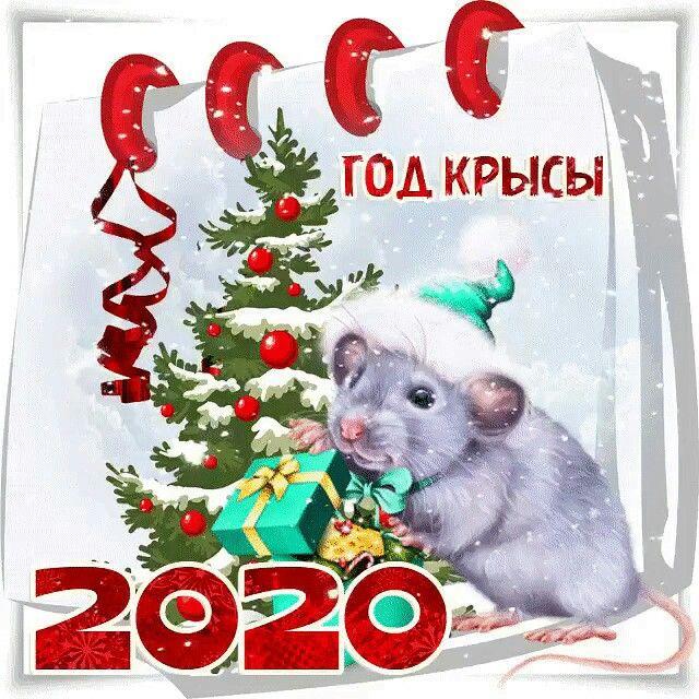 Pin By Natalya Chajkovskaya On Otkrytki Hamster Santa Painting