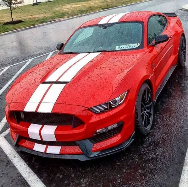 Killer combo on this Shelby GT350