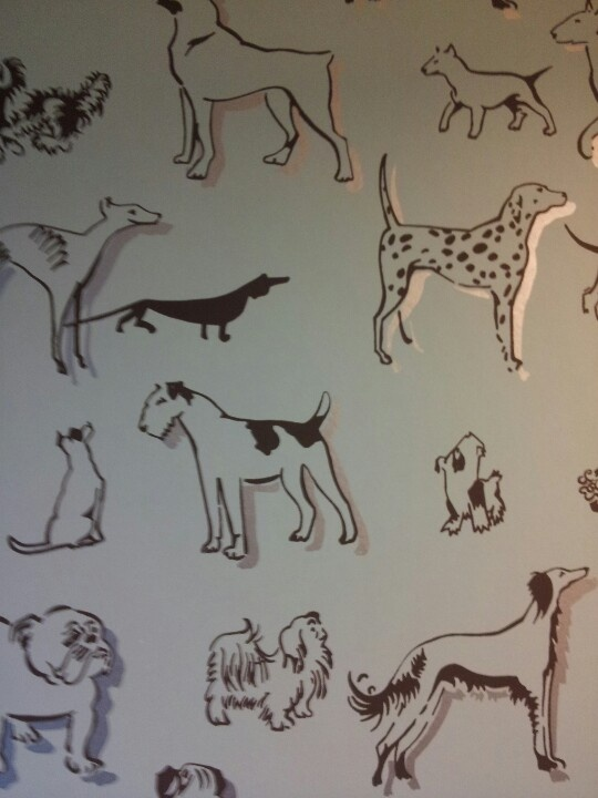 Dog themed wallpaper
