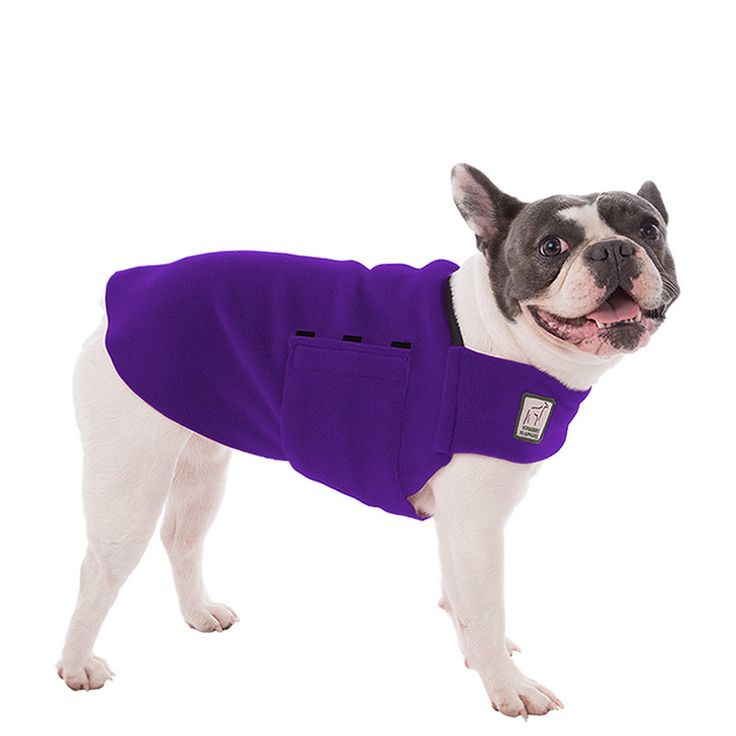Purple French Bulldog Dog Tummy Warmer, great for warmth, anxiety and laying with our dog rain coat. High performance material. Made in the USA.