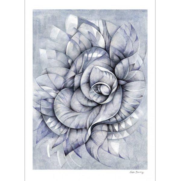 Plakat med et nytt botanisk motiv i svart/hvitt, størrelse: 50x70. Sofie Børsting skaper grafiske illustrasjoner fulle av geometriske former, mønstre og allverdens dyr. Illustras