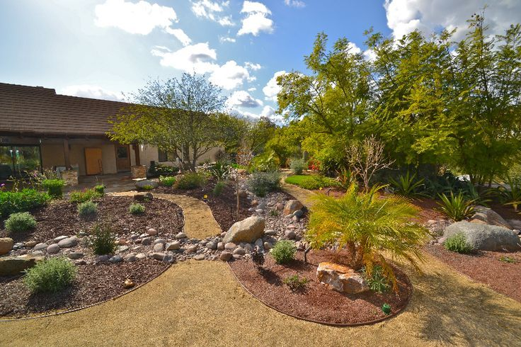 Affordable drought tolerant landscaping for a large for Low maintenance drought resistant landscaping